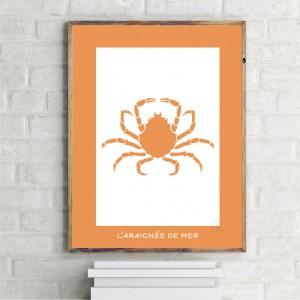 Araignée de Mer Affiche